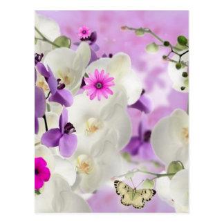 BlumenBlume blüht Rebeorchideen-Pflanzenblüte Postkarte