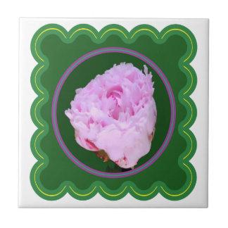 Blumendruck der eleganten rosa Rosen-Blume auf 100 Kleine Quadratische Fliese