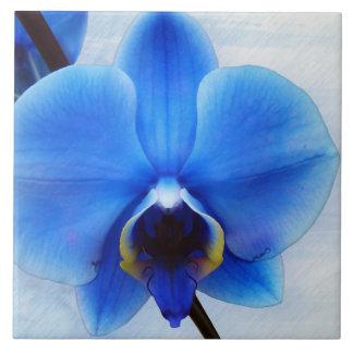 Blumenentwurf der exotischen Blume der blauen Fliese