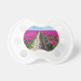 Blumenfeld mit lila Tulpen und Weg Schnuller