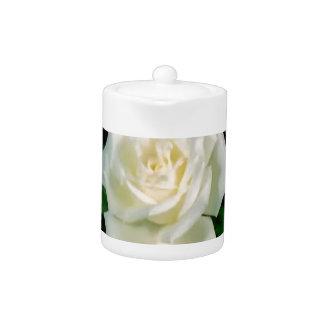 BlumenFoto der eleganten weißen Rosen-Blume auf