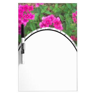 BlumenFoto der hübschen rosa Verbene-Blumen Memoboard