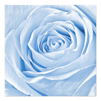 BlumenFoto-köstliche hellblaue Rose Kunstfoto