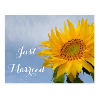 Blumengerade verheiratetes Sonnenblume-Gelb-blaue Postkarte
