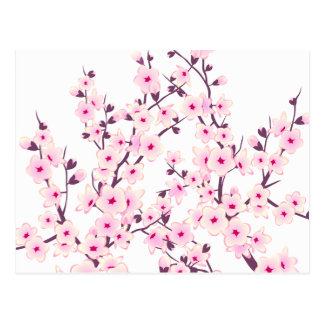 Blumenkirschblüten (Kirschblüte) Postkarte