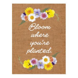 Blüte, in der Sie gepflanzt werden (Leinwand) Postkarte