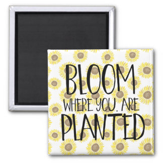 Blüte, in der Sie gepflanzt werden Quadratischer Magnet