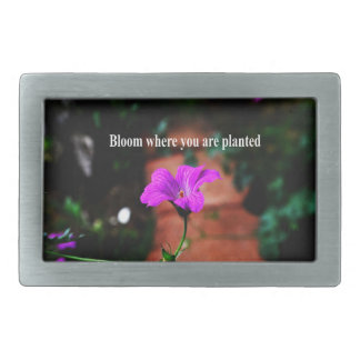 Blüte, in der Sie gepflanzt werden Rechteckige Gürtelschnallen