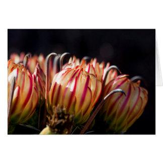 Blüte und Widerhaken Grußkarte
