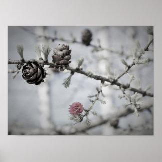 Blüten-Baum Poster