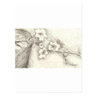 Blüten Postkarte