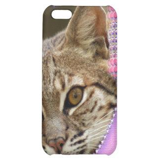 Bobcat-Speck-Kasten
