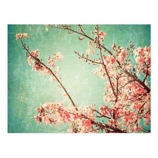 Bois turquoise porté élégant vintage et fleurs de  carte postale