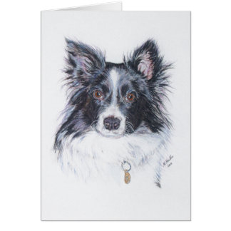 Border-Collie Karte
