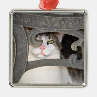 Boris-Miezekatze-Verzierung Quadratisches Silberfarbenes Ornament
