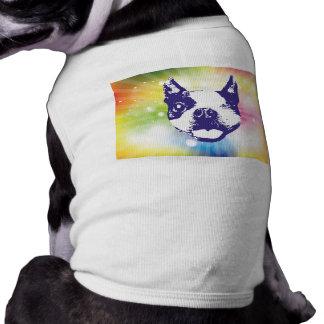 Boston Terrier - Sonnendurchbruch Top