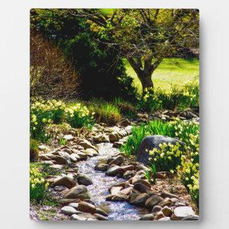 botanische Gärten Fotoplatte