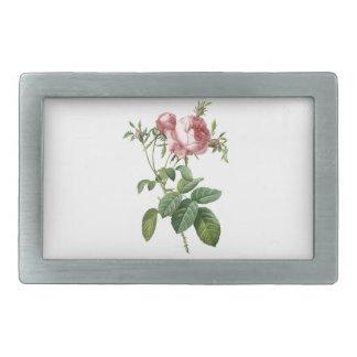 Botanische Illustration der Vintagen rosa Rose, Rechteckige Gürtelschnalle