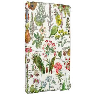 Botanische Illustrationen