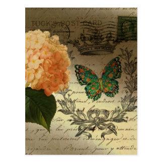 botanische Kunst Hydrangea-Schmetterlingskrone Postkarte