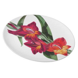 Botanische rote Gladiola Blumen-Blumenplatte Melaminteller