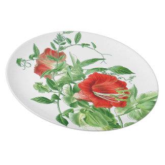 Botanische Schalen-und Saucers-Blumen-Blumenplatte Melaminteller