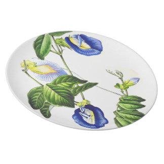 Botanische Teller
