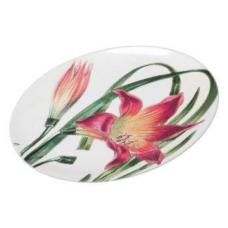 Botanische Wiesen-Lilien-Blumen-Blumenplatte Essteller