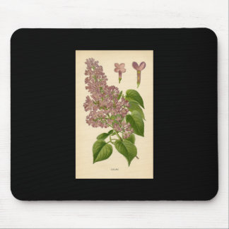 Botanischer Druck - Flieder Mousepad