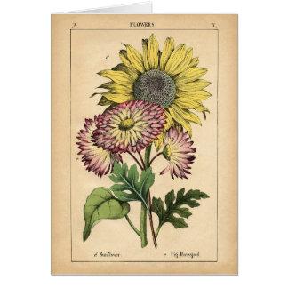Botanischer Druck - Sonnenblume u. Ringelblume Grußkarte