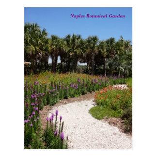 Botanischer Garten Florida Postkarte