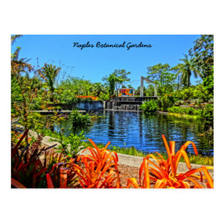 Botanischer Garten Neapels Florida - Mosaik-Wand Postkarte