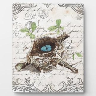 botanisches Vogelnest des rustikalen schicken Fotoplatte
