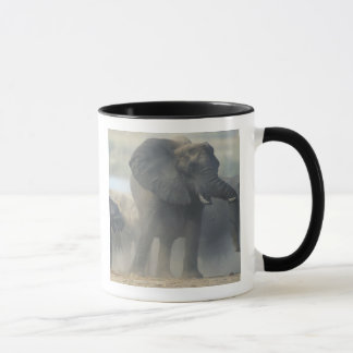 Botswana, Chobe Nationalpark, Elefantherde 2 Tasse