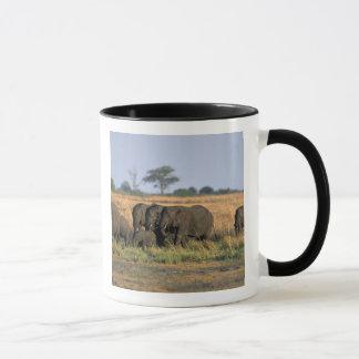 Botswana, Chobe Nationalpark, Elefantherde Tasse