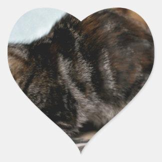 Bourrasque espiègle sticker cœur