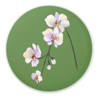 Bouton blanc, pourpre, et rose de vert de jet