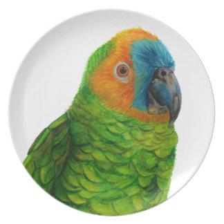 Brasilianischer Papagei Teller