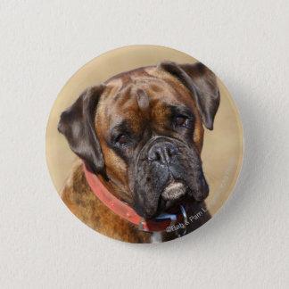 Brindle Boxer-Hund Runder Button 5,1 Cm