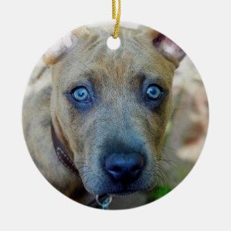 Brindle Pitbull-Welpe durch Shirley Taylor Keramik Ornament