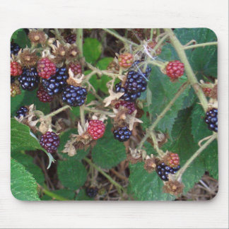 Brombeeren Blackberry Mousepad