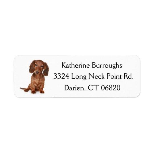 Brown-Dackel-Welpen-Hund personalisiert Rückversand-Adressaufkleber