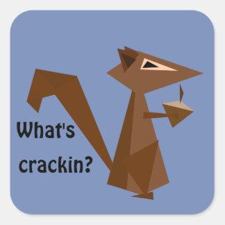 Brown-Eichhörnchen, was Crackin ist? Quadratischer Aufkleber