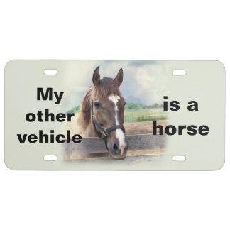 Brown-Pferd mit dem Halter US Nummernschild
