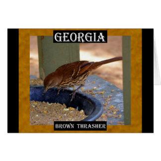 Brown Thrasher (Georgia) Karte