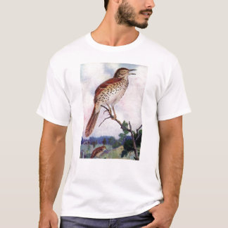Brown Thrasher T-Shirt