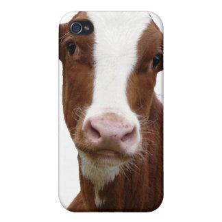 Brown und weiße Milchkuh iPhone 4/4S Cover