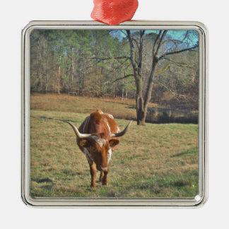 Brown und weißer blauer Himmel Longhorns Stier Silbernes Ornament