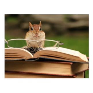 Buch liebevoller Chipmunk Postkarte