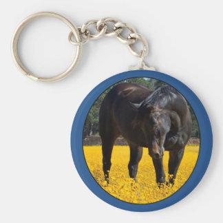 Bucht-Pferd auf einem Gebiet der gelben Blumen Schlüsselanhänger